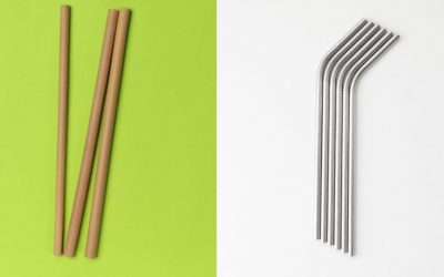 Bamboo Straws vs Metal Straws: Which Is Better?