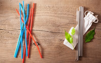 Are Metal Straws Better for the Environment?